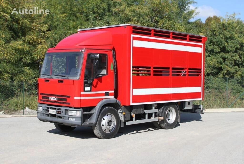 скотовоз IVECO 120E18